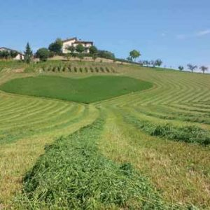 Esenzione Imu sui terreni agricoli: novità in vista!