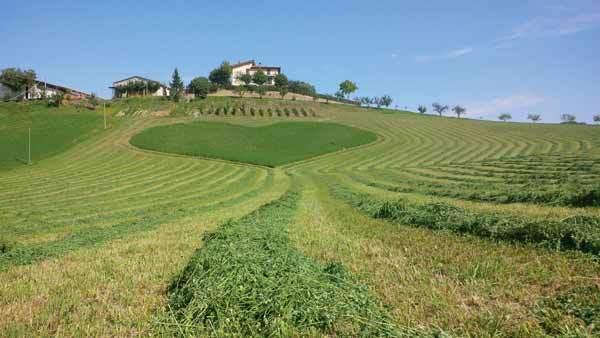 Imu per i terreni agricoli